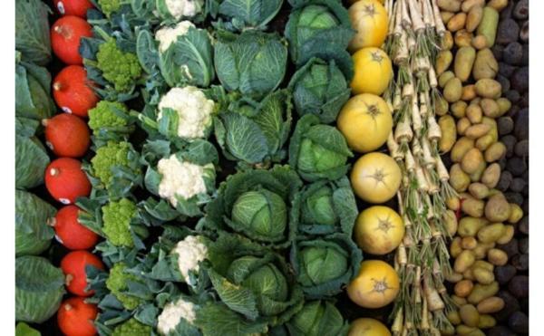 La France doit confirmer son rôle de pionnier en agriculture biologique
