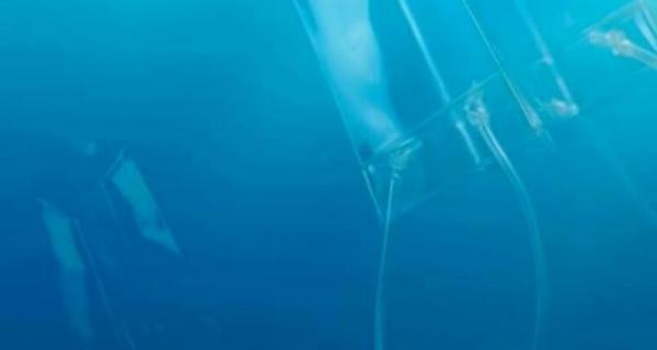 Actualité bientot plus de plastique que de poissons dans nos oceans