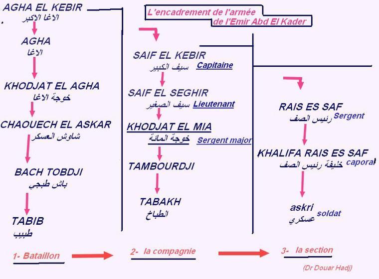 La hiérarchie dans l'armée de l'Emir Abd El Kader....Dr Douar Hadj.