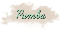 Présentation de Pumba