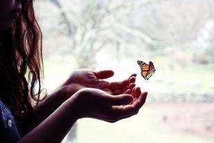 Du bist mein Schmetterling