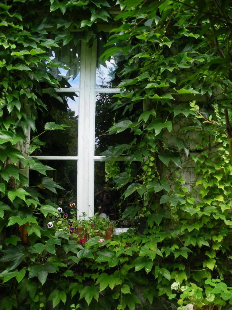 Ma fenêtre de cuisine pour Nialaa   ;-)   : coin de ciel bleu, miroir sur un mur, la propriétaire qui prend la photo tout en bas.