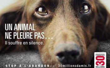 """Parce que la souffrance animale n'est pas juste une """"chose"""" contre laquelle nous ne pouvons rien faire"""