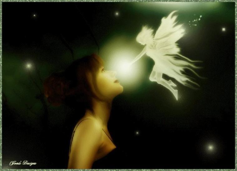 petites fées de la nuit
