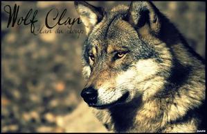 Clan du Loup. ~♪