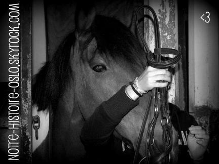 Etre heureux à cheval, c'est être entre ciel et terre, à une hauteur qui n'existe pas. ♥