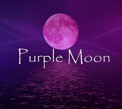 A la découverte de nouveau goupe: PurpleMoon.