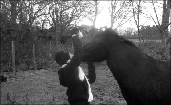 Ta pas de copain ? :O Nan j'ai un poney , c'est 1000000000000000000000 fois mieu :D (LOL)