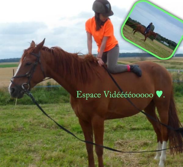 Espace Vidéo ♥ « Marcher sur l'eau, Eviter les péages, Jamais souffrir, Juste faire hennir, Les chevaux du plaisir. »