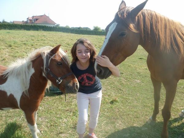 « Les chevaux sont des créatures mystérieuses, ou divines. »