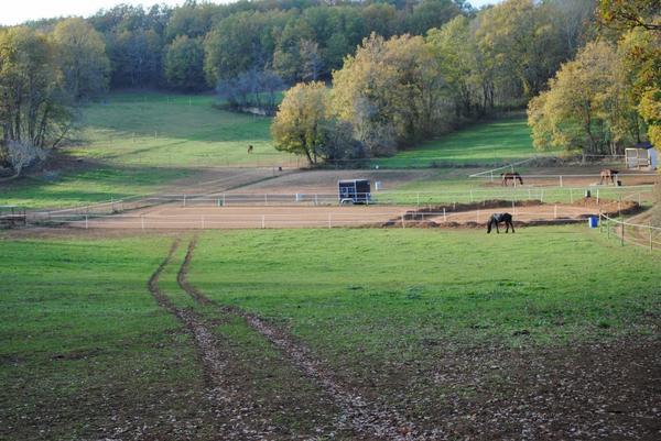 Pension pour chevaux dans le Lot (46)