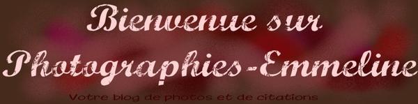 Présentation de Photographies-Emmeline