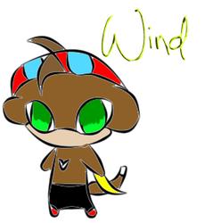 Wind the Monkey
