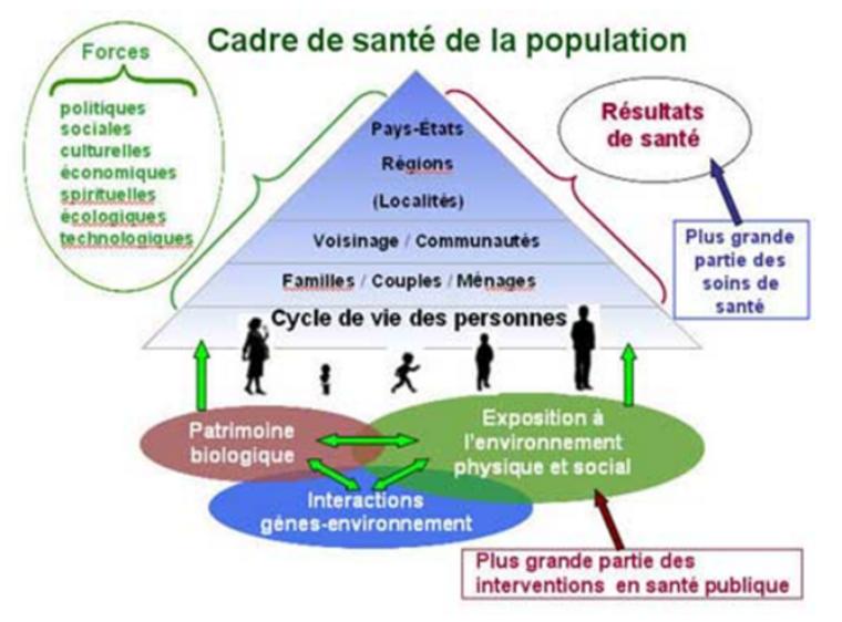 Chapitre 3 : Etat de santé et de bien-être social : une articulation de déterminants (2)
