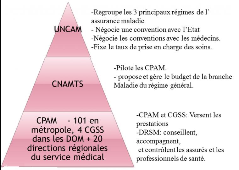Chapitre 6.2 : L'assurance maladie (1)