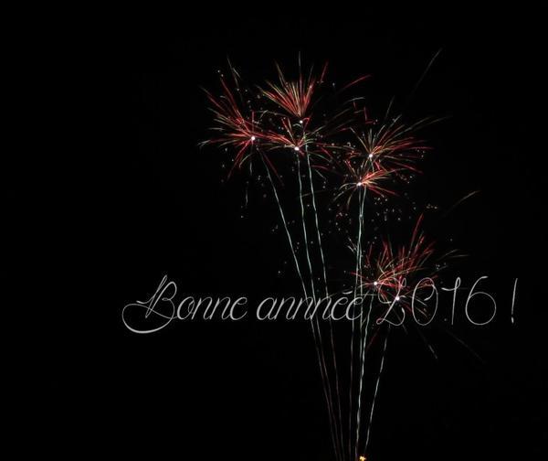 Photo 2 [26/12/15] dernières photos de l'année 2015...
