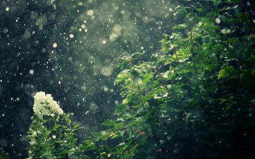Fanfiction n°1  Fausse Paix - Chapitre deux : Telle la pluie qui tombe sans obstacle sur son chemin, les problèmes s'amoncellent sur une montagne de douleur et de désespoir
