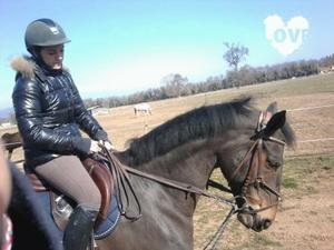 """""""C'est en travaillant son cheval avec l'idée qu'il soit heureux, qu'on devient moins égoïste et plus généreux."""""""