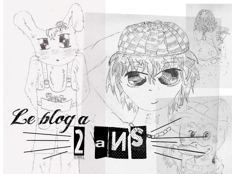 Le blog a deux ans : Deux ans de blogging DIY !