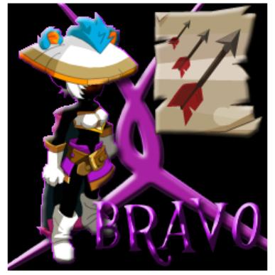 ---> Présentation de la team Bravo <---