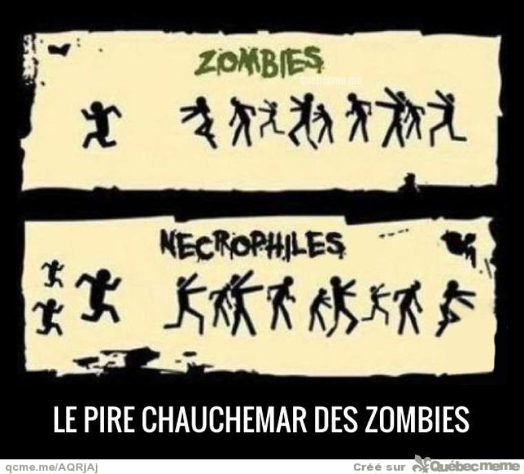 Une image pour Nuit-Cristalline, ma meilleure amie et maman des zombies :p