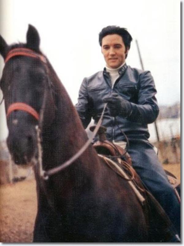 1968 - Horseback riding at Graceland. Centre équestre à Graceland.