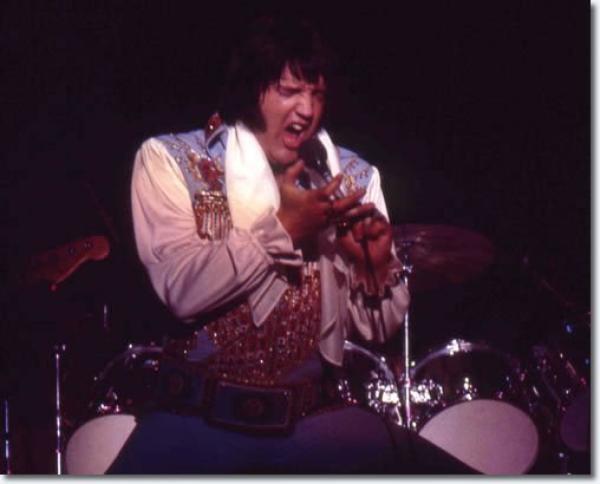 Elvis Presley  Veterans Memorial Coliseum, New Haven, Connecticut. 830 p.m July 30, 1976