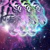 Sirkka - Fear of tigers
