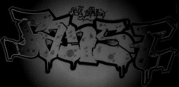 FANS-T