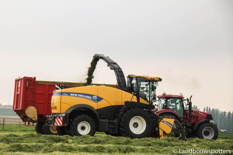 New Holland FR 850 DEMO TIER 4B 2016 - Vandebulcke uit Bellegem