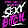 David Guetta and Akon __Sexy Chick