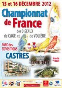 Mondial Hasselt 2013 - National Castres 2012  -  Régional de Bretagne 2012