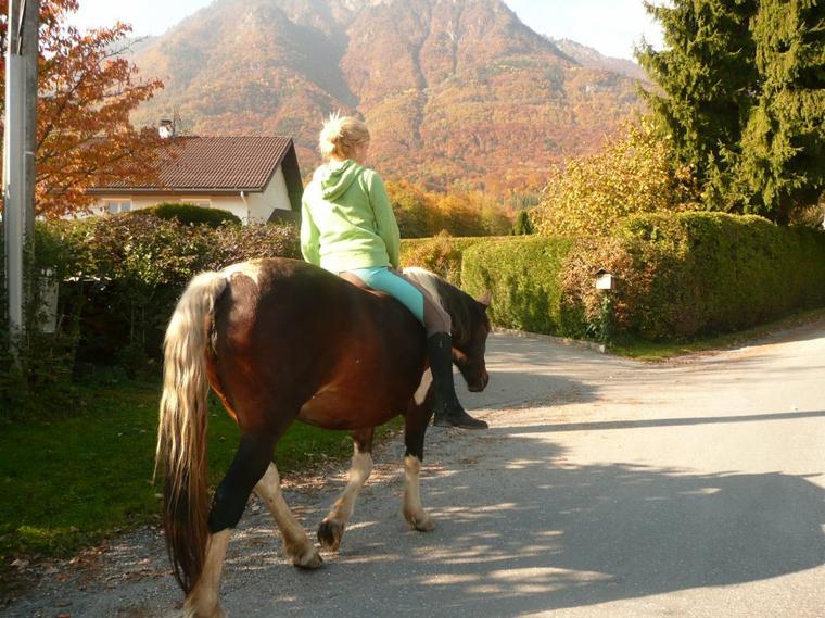 """""""Pour parler à un cheval, il n'y a pas besoin de mots. C'est une étreinte charnelle qui alimente nos rêves.""""♡ ."""
