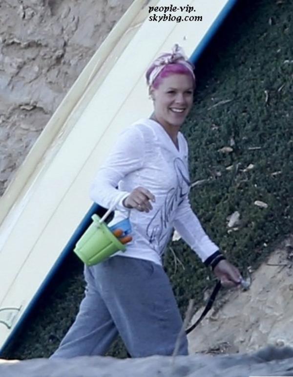 Pink prend du bon temps sur la plage de Malibu avec son mari Carey Hart et sa fille de 1 ans Willow Sage. Jeudi, 28 juin