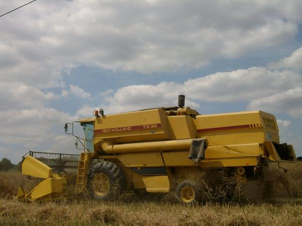 moissoneuse bateuse new holland TX 34