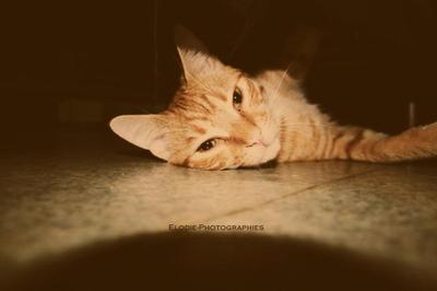 † Cute.