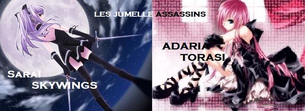Les jumelle assassins