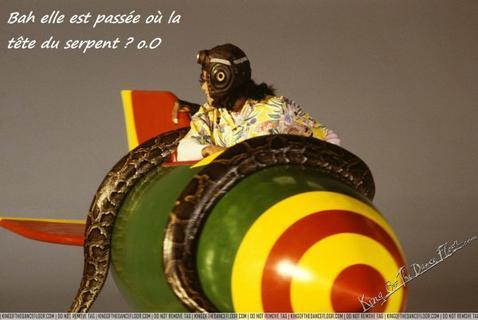 _ _ Juste un ptit déliire!! 4   _ _