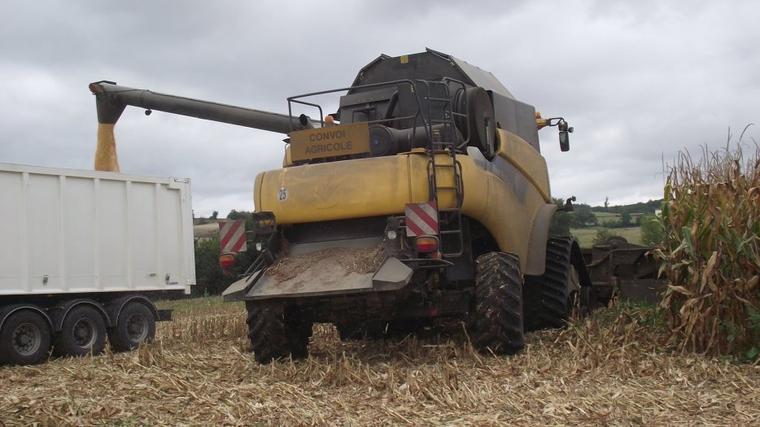 récolte de maïs dans le 47