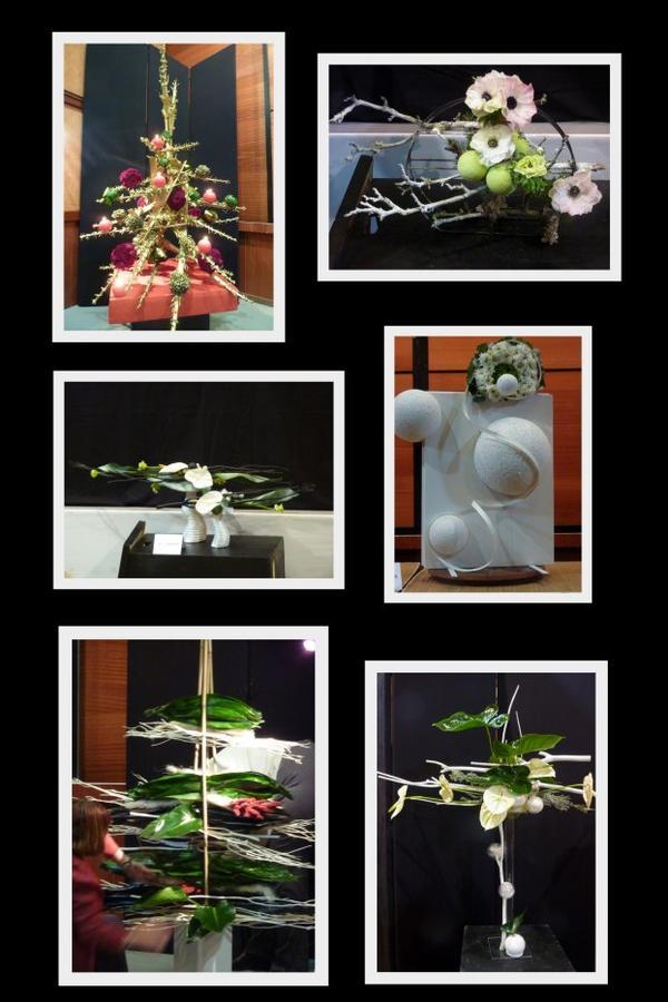 Jeudi 8  Décembre 2011..J-17    Démonstration