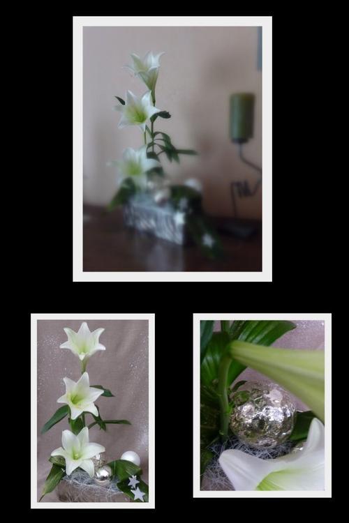 Dimanche 18Décembre 2011 ..J-7 .....Argent, vert et blanc