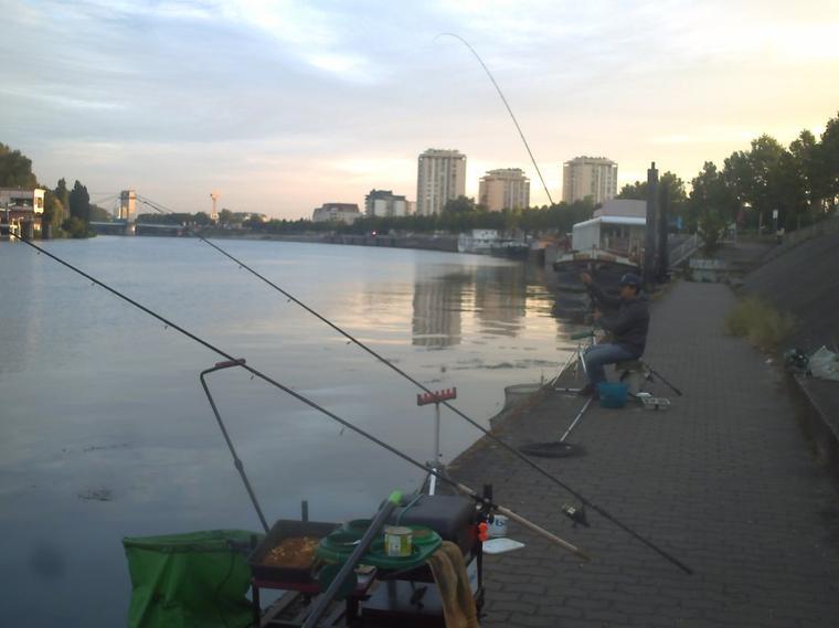 des matins de pêche feeder