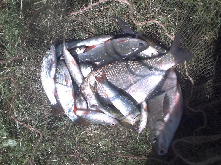 voila deux technique de pêche sur un lieu sympas