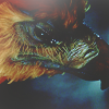 HARRY POTTER 2 - Fawkes is reborn