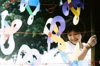 Film : Taiwanais Summer's Tail 99 minutes[Romance et Drame]