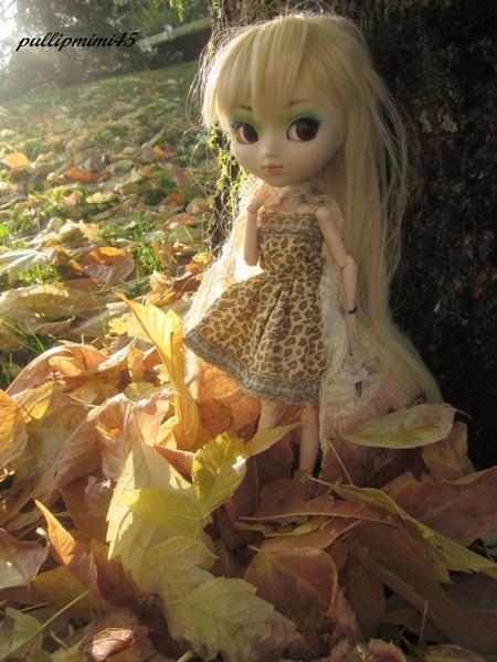 fraicheur d'automne