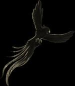 Chapitre 10: L'angoisse des pavés