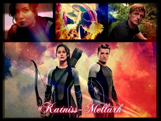 """Sommaire de ma fiction """"Hunger Games"""""""