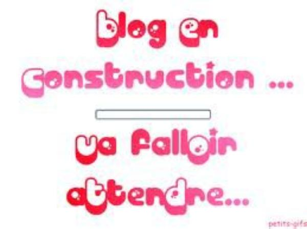 /!\ Blog en construction !