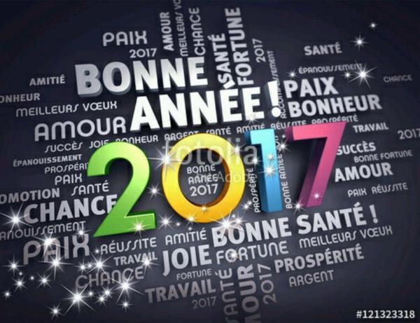 Bonne année à tous ceux que j'aime